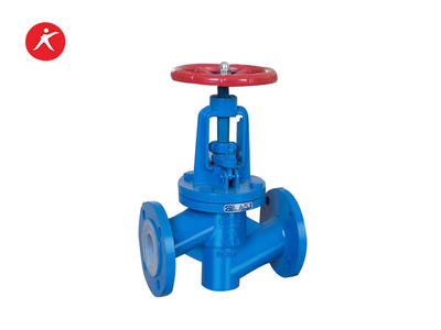 Fluorine Lined Bellow Seal Flanged Globe Valve For Water (J41FEP/PFA)