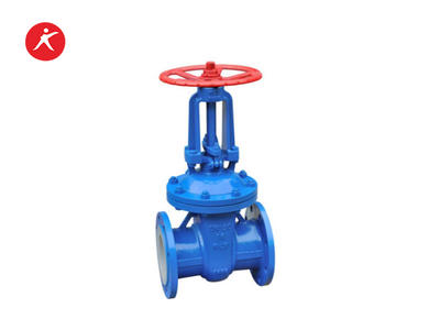 Professional Fluorine Lined Brass  Water Gate Valve for Sale (Z41FEP/PFA)